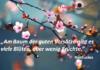 Spruch_des_Tages_Konfuzius_Blüten