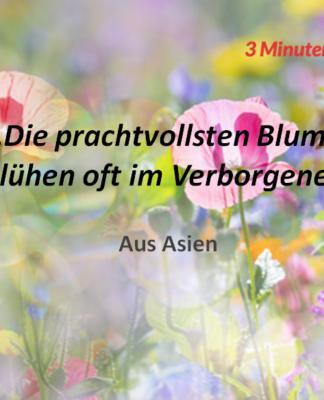 Spruch-des-Tages_Asien_Blumen