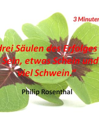 Spruch-des-Tages_Rosenthal_Schwein