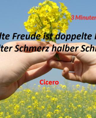 Spruch-des-Tages_Cicero_Schmerz
