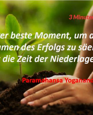 Spruch-des-Tages_Yogananda_Erfolg