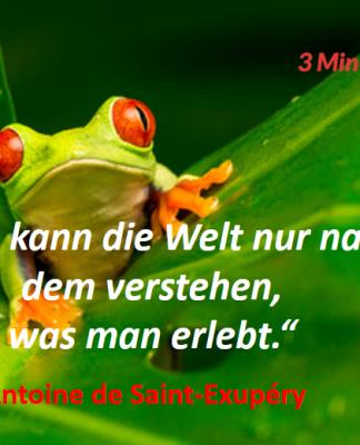 Spruch-des-Tages_Saint-Exupéry_Erleben